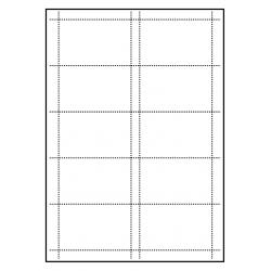 Cartes de visite 85 x 54 mm 100 feuilles à 10 cartes